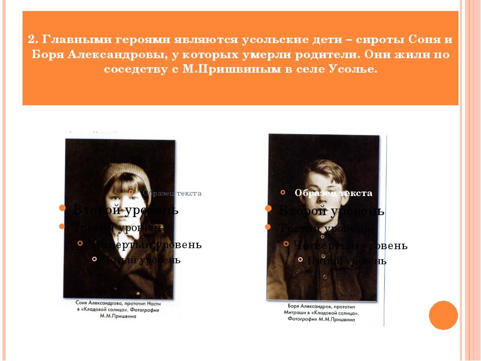 2. Главными героями являются усольские дети – сироты Соня и Боря Александровы...