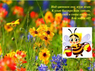 Над цветком она жужжит К улью быстро так летит, Мёд свой в соты отдала, Как