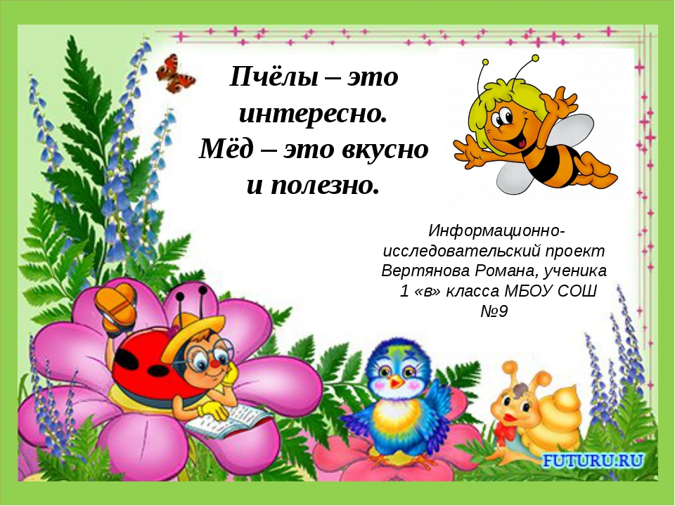 . . Пчёлы – это интересно. Мёд – это вкусно и полезно. Информационно-исследо...