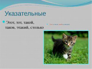Указательные Этот, тот, такой, таков, этакий, столько Этот котенок такой мале