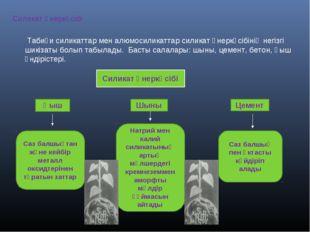 Силикат өнеркәсібі Табиғи силикаттар мен алюмосиликаттар силикат өнеркәсібіні