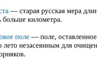 Верста — старая русская мера длины, чуть больше километра. Паровое поле — пол