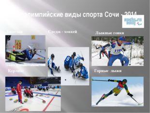 Паралимпийские виды спорта Сочи - 2014 Лыжные гонки Следж - хоккей Биатлон Ке