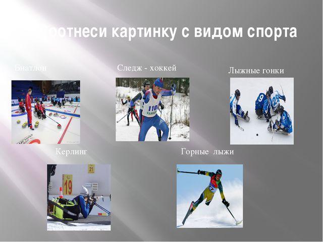 Соотнеси картинку с видом спорта Лыжные гонки Следж - хоккей Биатлон Керлинг...