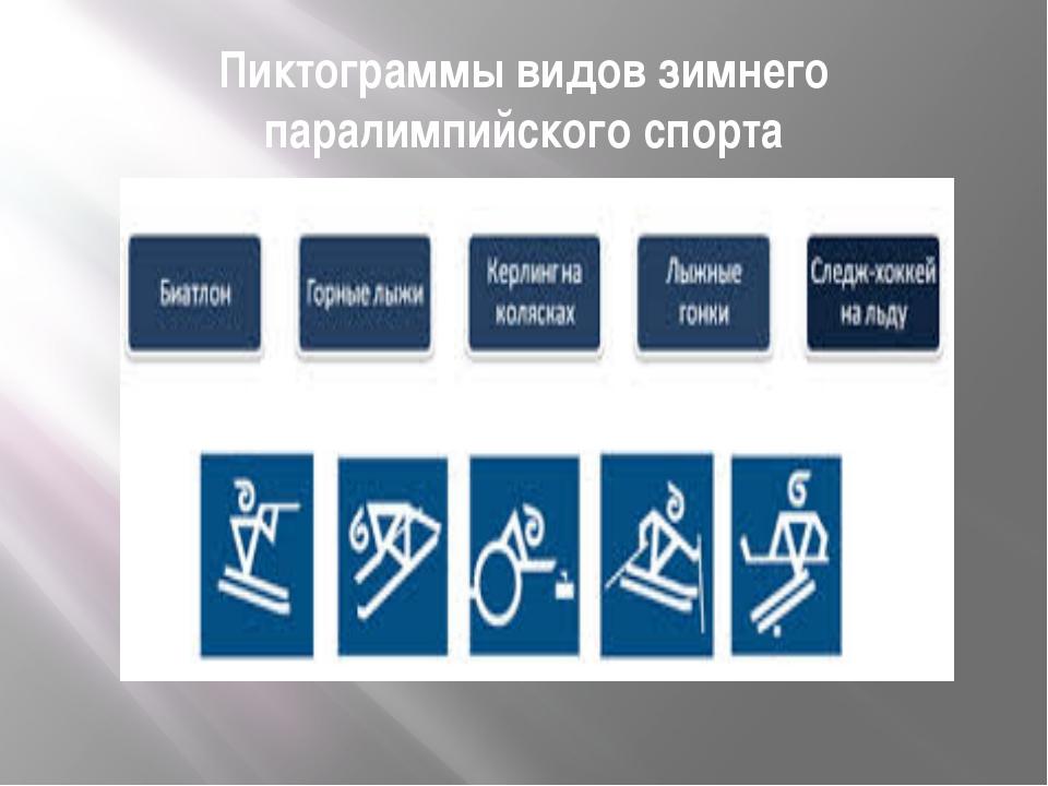 Пиктограммы видов зимнего паралимпийского спорта