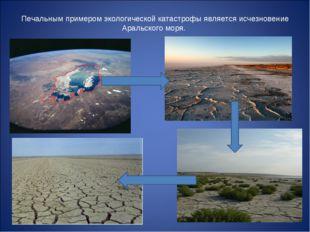 Печальным примером экологической катастрофы является исчезновение Аральского