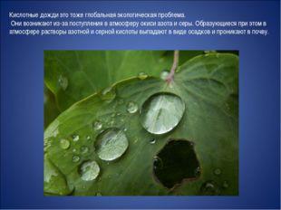 Кислотные дожди это тоже глобальная экологическая проблема. Они возникают из-