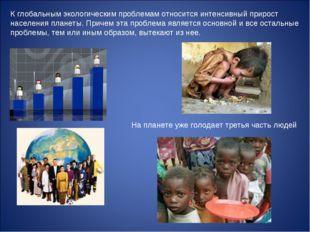 К глобальным экологическим проблемам относится интенсивный прирост населения