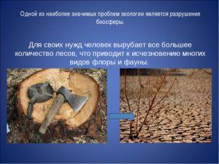 Одной из наиболее значимых проблем экологии является разрушение биосферы. Для