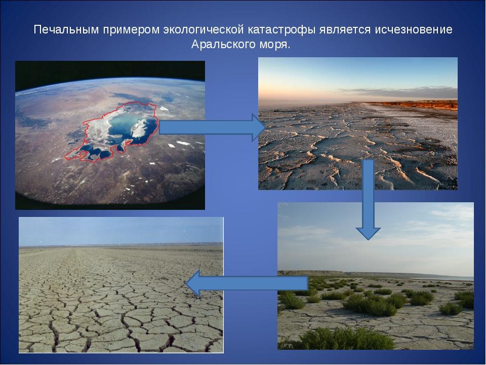 Печальным примером экологической катастрофы является исчезновение Аральского...