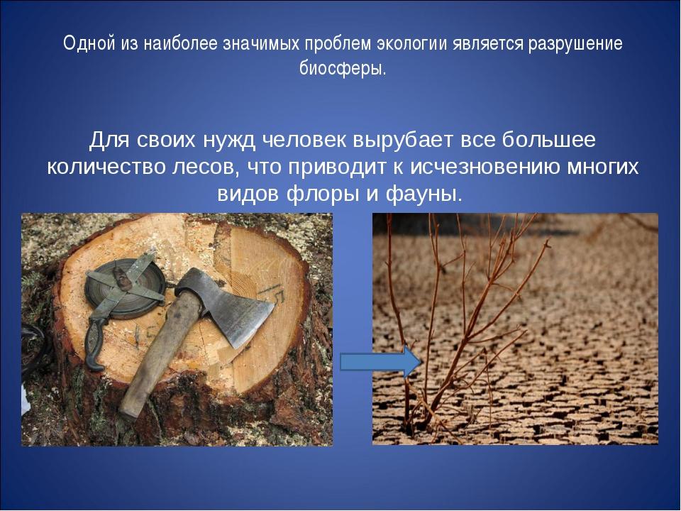 Одной из наиболее значимых проблем экологии является разрушение биосферы. Для...