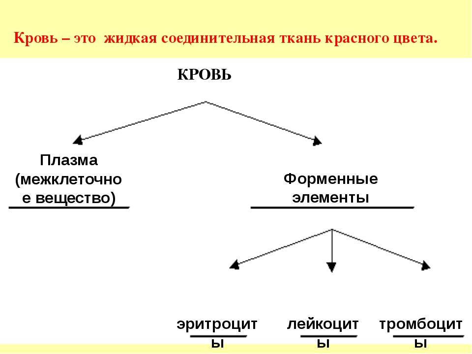 Плазма (межклеточное вещество) Форменные элементы КРОВЬ эритроциты лейкоциты...