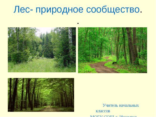 Лес- природное сообщество. . Учитель начальных классов МОБУ СОШ с. Ишемгул Ша...