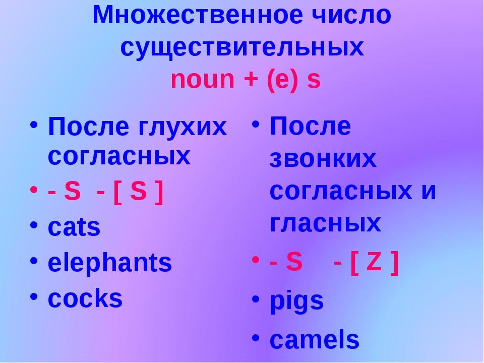 Множественное число существительных noun + (e) s После глухих согласных - S -...