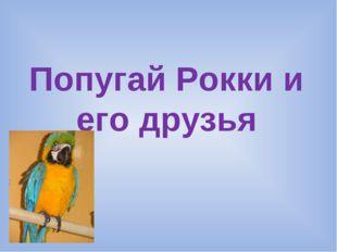 Попугай Рокки и его друзья