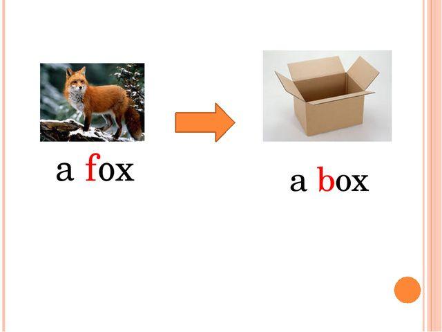 a fox a box