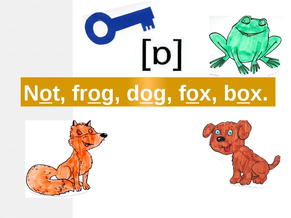 Not, frog, dog, fox, box.