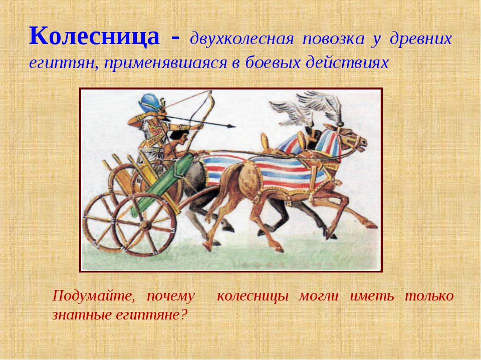 Колесница - двухколесная повозка у древних египтян, применявшаяся в боевых де...