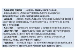 Саврасая масть — «дикая» масть, масть лошади Пржевальского. Окраска туловища