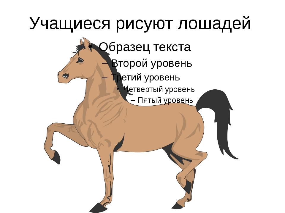 Учащиеся рисуют лошадей