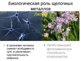 Биологическая роль щелочных металлов Литий В организме человека снижает возбу