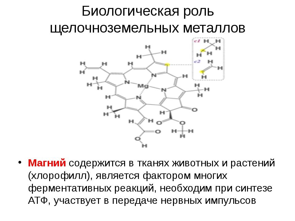 Биологическая роль щелочноземельных металлов Магний содержится в тканях живот...