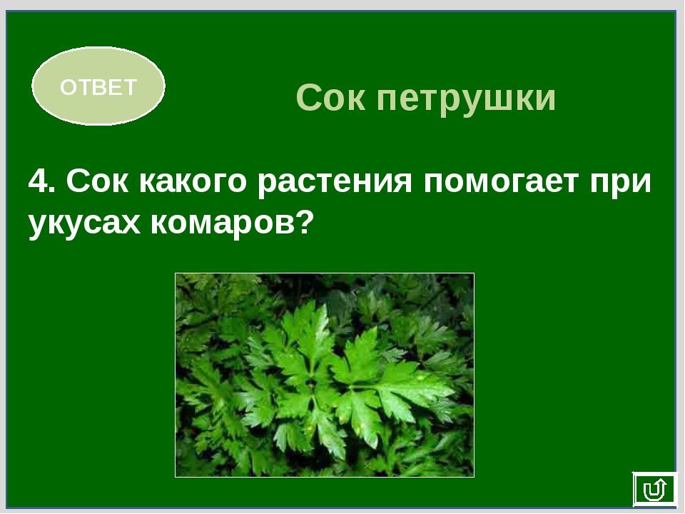 4. Сок какого растения помогает при укусах комаров? ОТВЕТ Сок петрушки