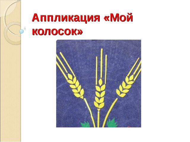 Аппликация «Мой колосок» Хомякова Лидия Ивановна МАОУ СОШ №22