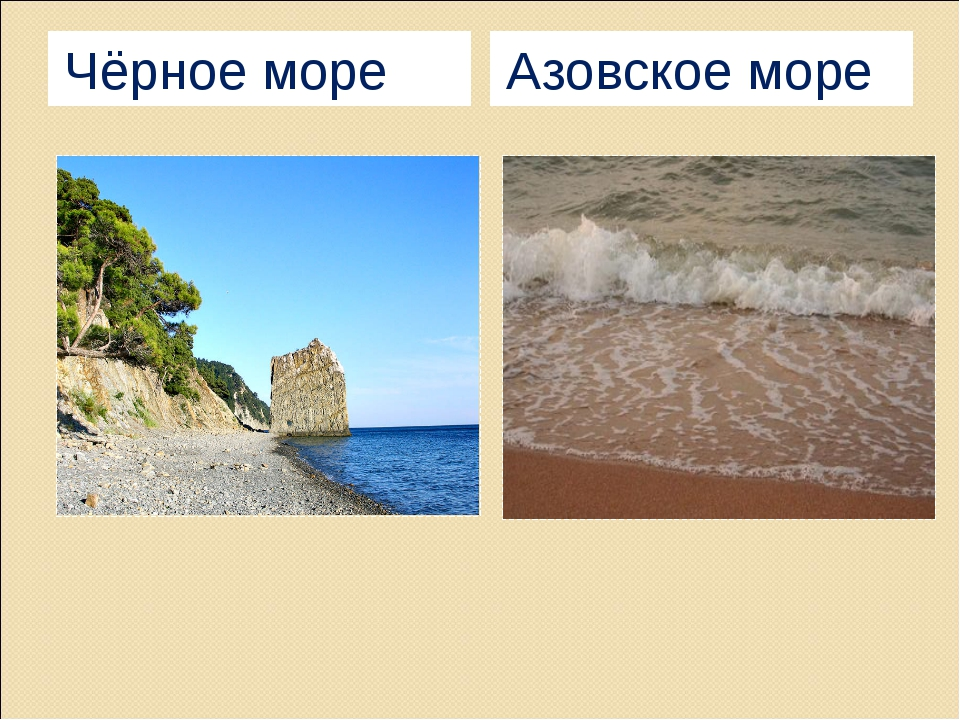Чёрное море Азовское море Хомякова Лидия Ивановна МАОУ СОШ №22