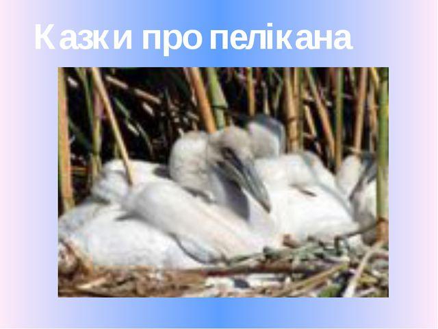 Казки про пелікана