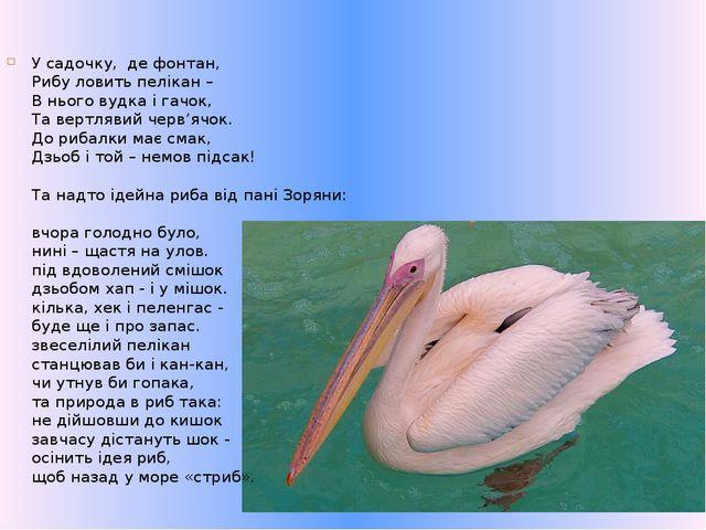 У садочку,де фонтан, Рибу ловить пелікан – В нього вудка і гачок, Та вертля...