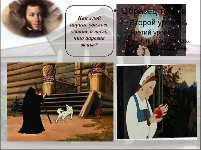 Как злой царице удалось узнать о том, что царевна жива?