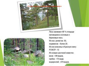 Леса занимают 85 % площади заповедника сосновые и березовые леса. Из них: ре