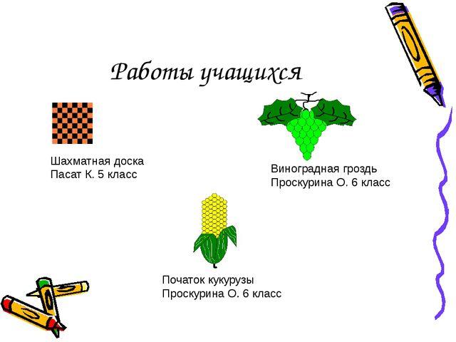 Работы учащихся Шахматная доска Пасат К. 5 класс Виноградная гроздь Проскурин...
