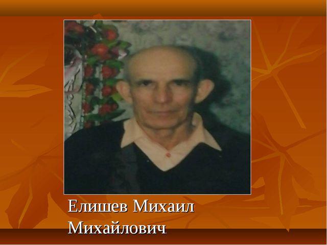 Елишев Михаил Михайлович.