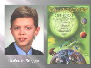 Цыбенко Богдан