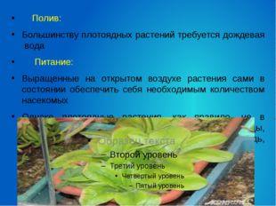 Полив: Большинству плотоядных растений требуется дождевая вода Питание: Выра