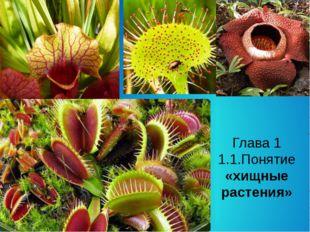 Глава 1 1.1.Понятие «хищные растения»