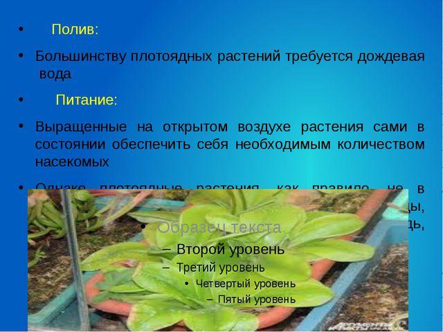 Полив: Большинству плотоядных растений требуется дождевая вода Питание: Выра...