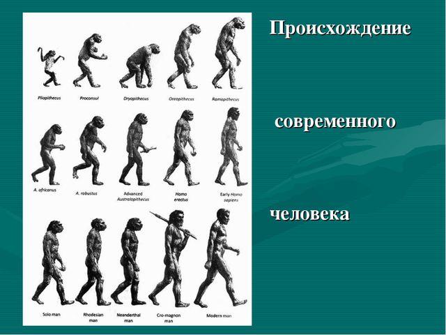 Происхождение современного человека
