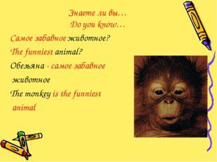 Знаете ли вы… Do you know… Самое забавное животное? The funniest animal? Обез