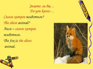 Знаете ли вы… Do you know… Самое хитрое животное? The sliest animal? Лиса – с