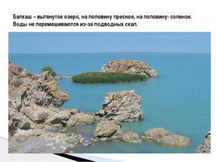 Балхаш – вытянутое озеро, на половину пресное, на половину- соленое. Воды не
