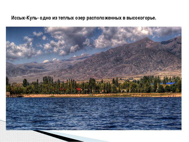 Иссык-Куль- одно из теплых озер расположенных в высокогорье.