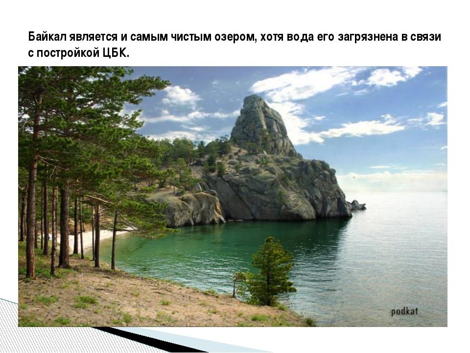 Байкал является и самым чистым озером, хотя вода его загрязнена в связи с по...
