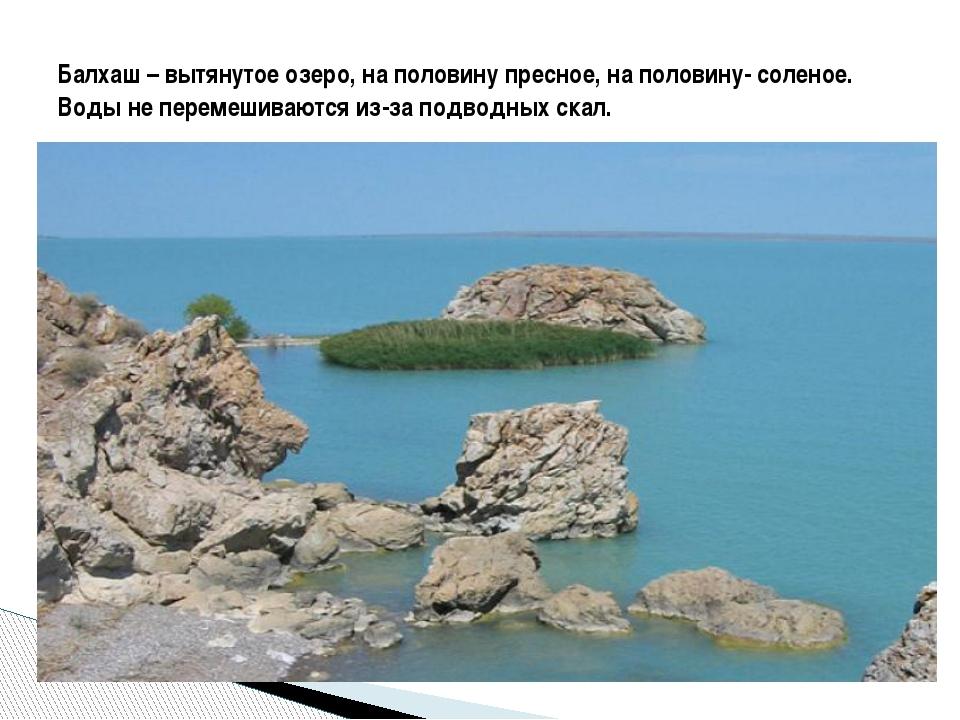 Балхаш – вытянутое озеро, на половину пресное, на половину- соленое. Воды не...