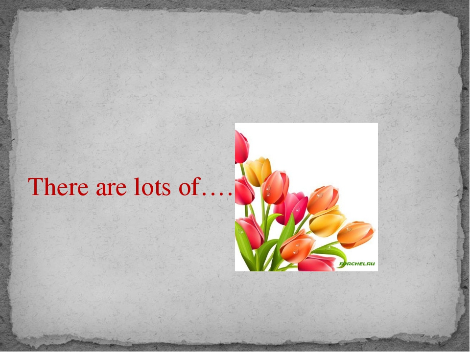 There are lots of……