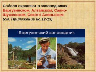 Соболя охраняют в заповедниках : Баргузинском, Алтайском, Саяно-Шушенском, Си