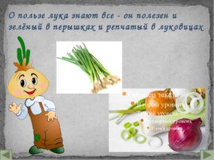 О пользе лука знают все - он полезен и зелёный в перышках и репчатый в лукови