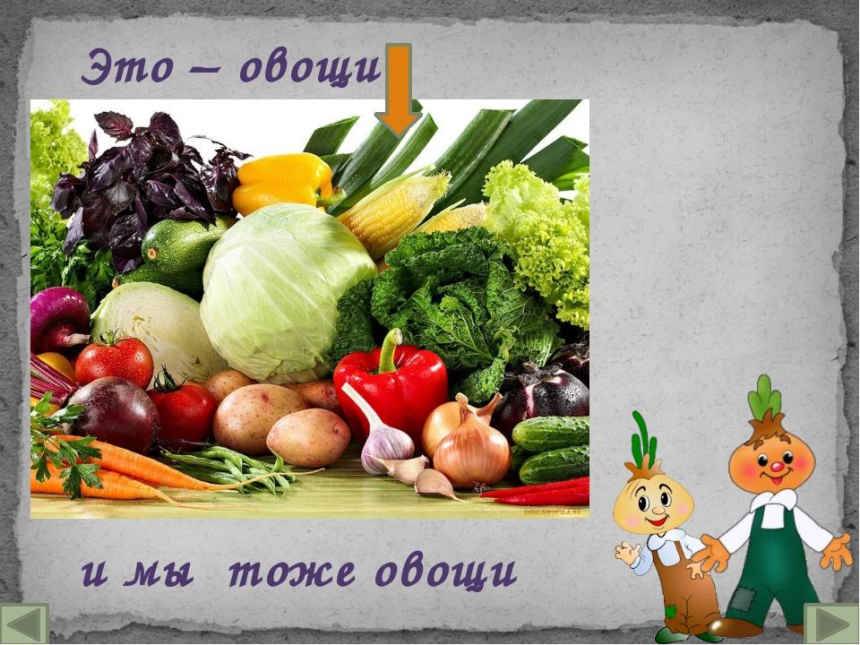 Это – овощи и мы тоже овощи